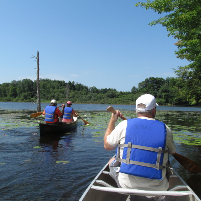 canoeing at Beaver Meadow