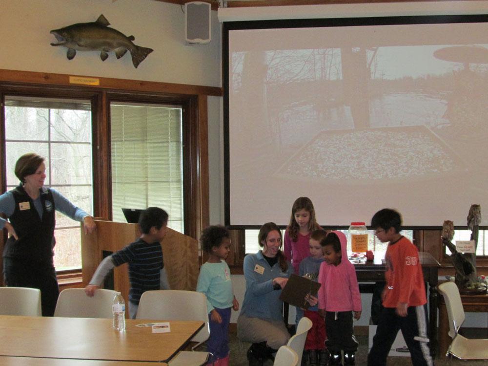 Group Bird Presentation