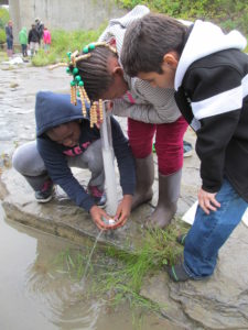 Students doing turbidity test in Buffalo River